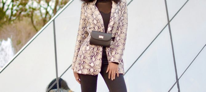 Fall/Winter Style: Shein Snakeskin Print Flap Blazer + Mesh Insert Front Solid Tee