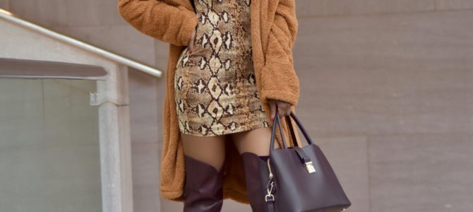 Fall/Winter Style: Snakeskin Print Dress + Teddy Coat